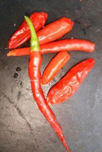 chile-piquin