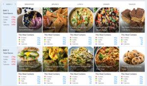 Vegan muscle diet meal plan