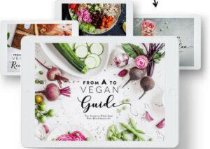 vegan transition guide